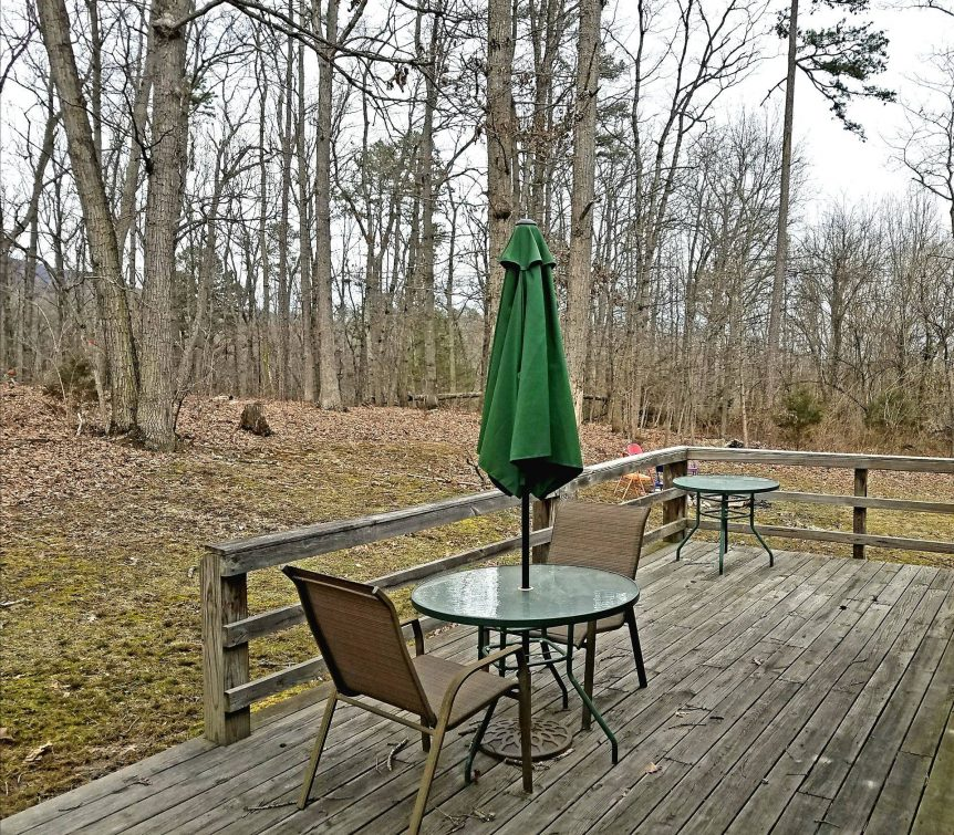 deck next to forest at Forest Glen cabin